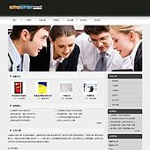 企业网站-翻译A13