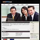 企业网站-翻译A15