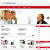 企业网站-翻译A30