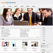 企业网站-翻译A46