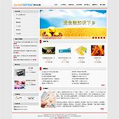 企业网站-金融A5