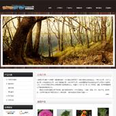 企业网站-林业A5