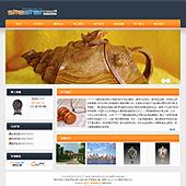 企业网站-拍卖A45
