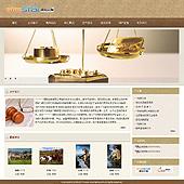 企业网站-拍卖A49