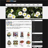 企业网站-鲜花A22