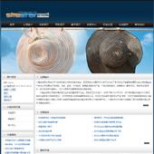 企业网站-鞋帽A3