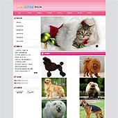 企业网站-运动A24