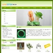 企业网站-珠宝A19
